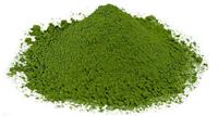緑茶のさまざまな機能